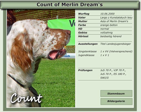 Count of Merlin Dream's